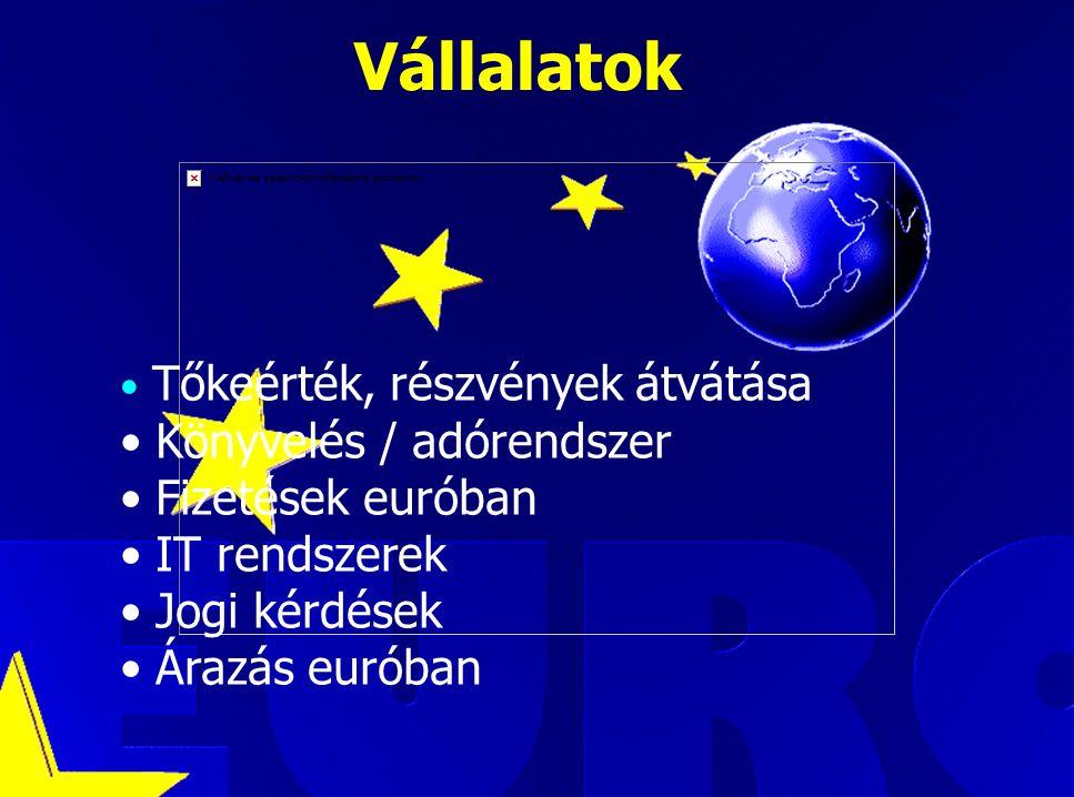 Luca Kadar, European Commission Vállalatok Tőkeérték, részvények átvátása Könyvelés / adórendszer Fizetések euróban IT rendszerek Jogi kérdések Árazás