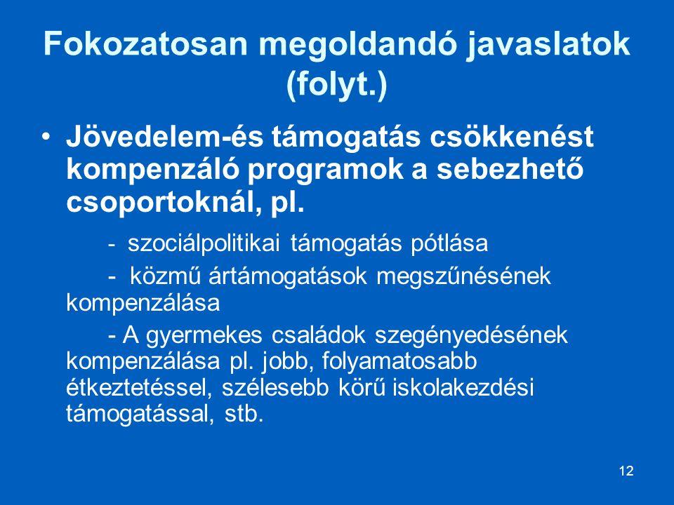 12 Fokozatosan megoldandó javaslatok (folyt.) Jövedelem-és támogatás csökkenést kompenzáló programok a sebezhető csoportoknál, pl.
