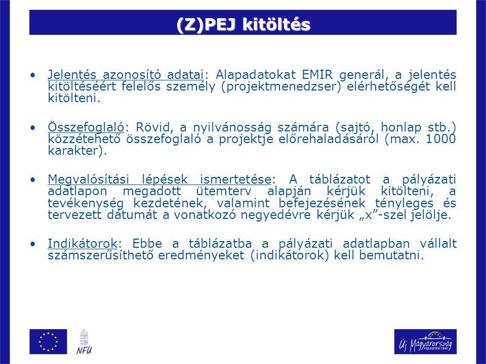 (Z)PEJ kitöltés Jelentés azonosító adatai: Alapadatokat EMIR generál, a jelentés kitöltéséért felelős személy (projektmenedzser) elérhetőségét kell kitölteni.