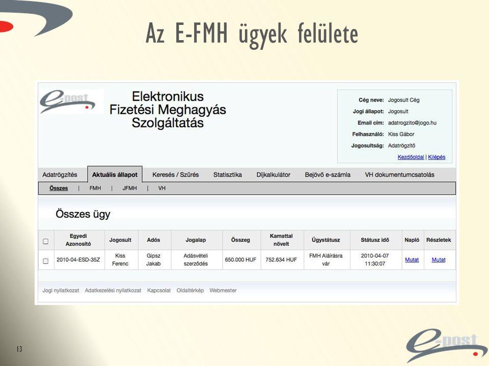 Az E-FMH ügyek felülete 13