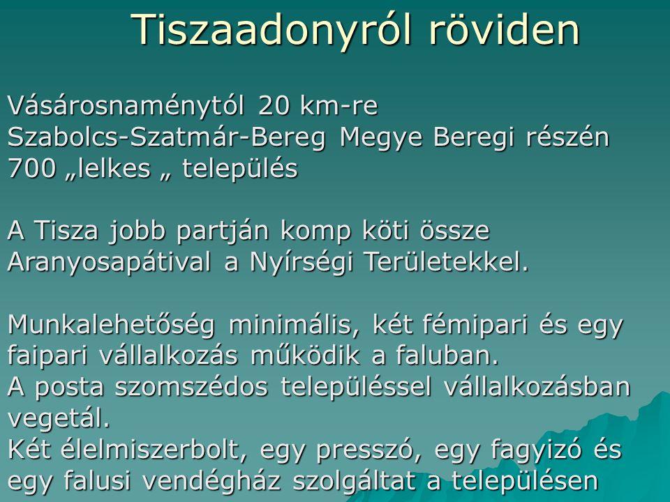 Szociális földprogramtól a munkahelyteremtésig aktív szociálpolitikai eszközök felhasználásával 2009 Július 23 Kecskemét