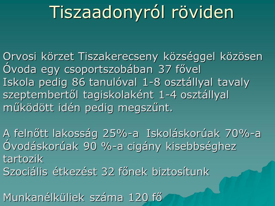 """Tiszaadonyról röviden Vásárosnaménytól 20 km-re Szabolcs-Szatmár-Bereg Megye Beregi részén 700 """"lelkes """" település A Tisza jobb partján komp köti össze Aranyosapátival a Nyírségi Területekkel."""