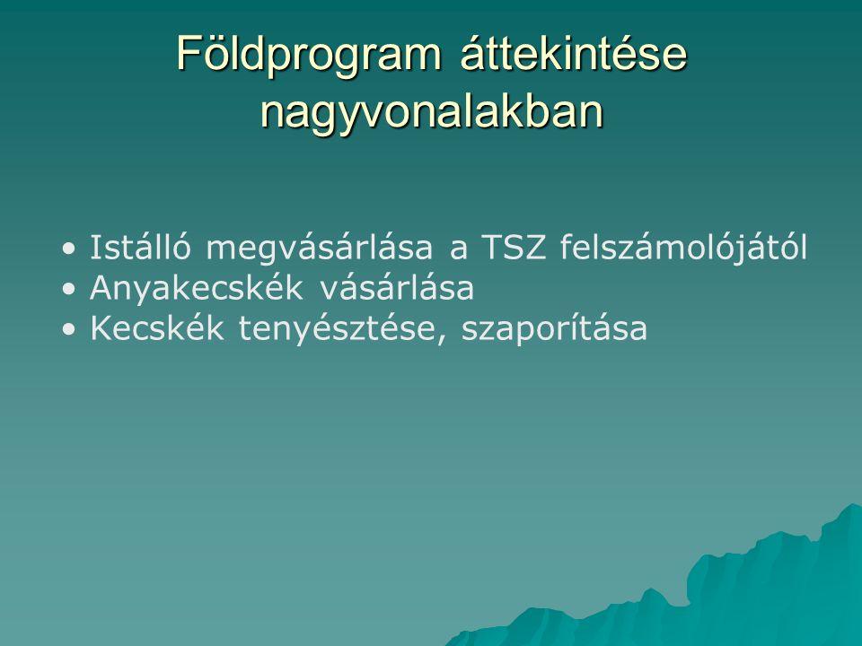 Földprogram áttekintése nagyvonalakban Istálló megvásárlása a TSZ felszámolójától Anyakecskék vásárlása Kecskék tenyésztése, szaporítása