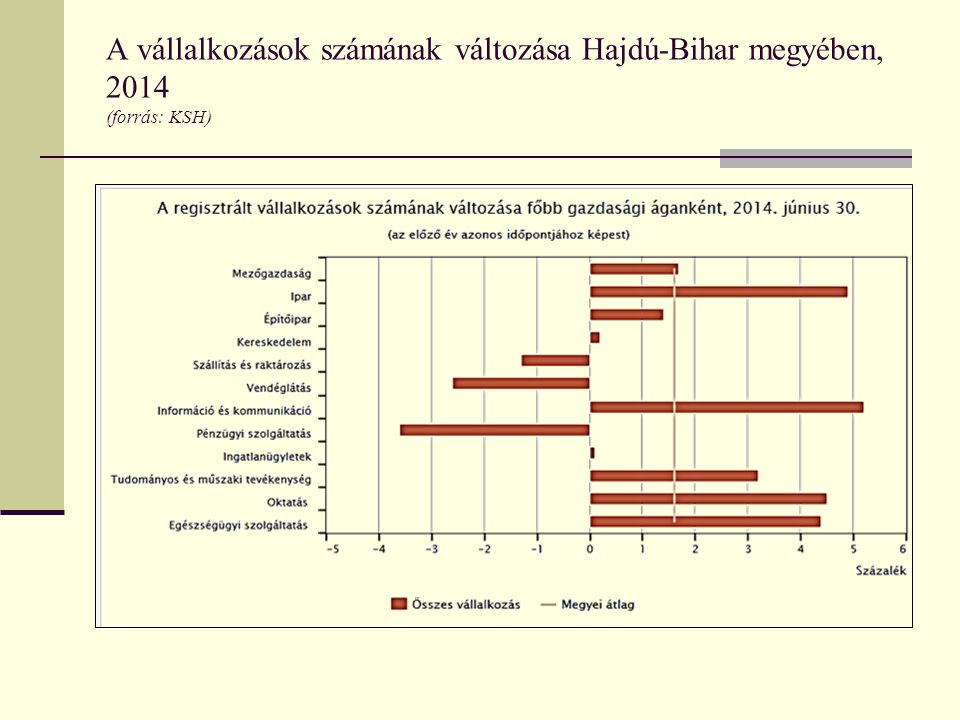 A vállalkozások számának változása Hajdú-Bihar megyében, 2014 (forrás: KSH)
