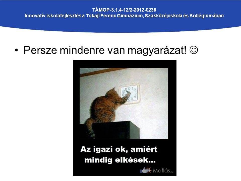 Persze mindenre van magyarázat! TÁMOP-3.1.4-12/2-2012-0236 Innovatív iskolafejlesztés a Tokaji Ferenc Gimnázium, Szakközépiskola és Kollégiumában