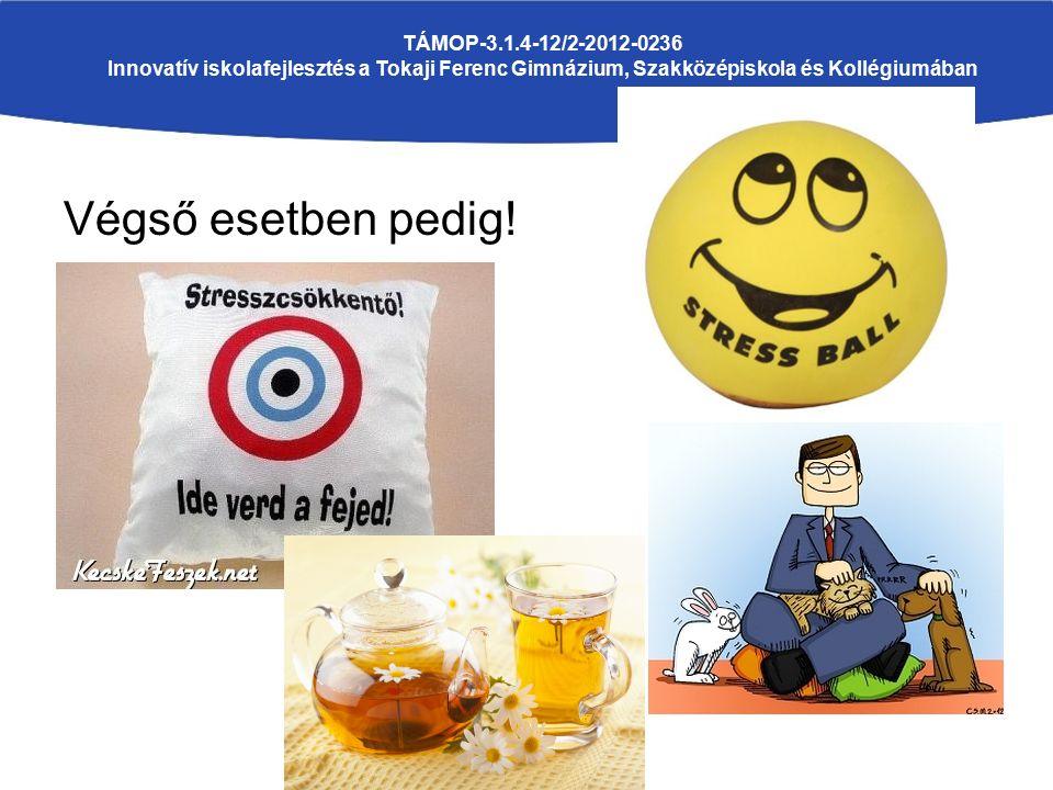 Végső esetben pedig! TÁMOP-3.1.4-12/2-2012-0236 Innovatív iskolafejlesztés a Tokaji Ferenc Gimnázium, Szakközépiskola és Kollégiumában