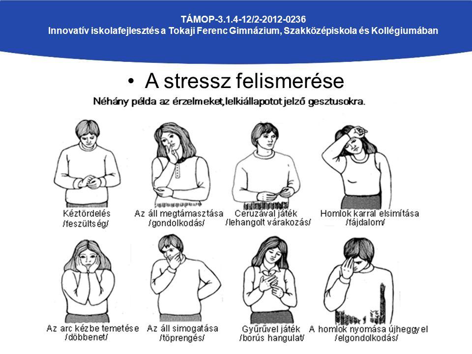 A stressz felismerése TÁMOP-3.1.4-12/2-2012-0236 Innovatív iskolafejlesztés a Tokaji Ferenc Gimnázium, Szakközépiskola és Kollégiumában