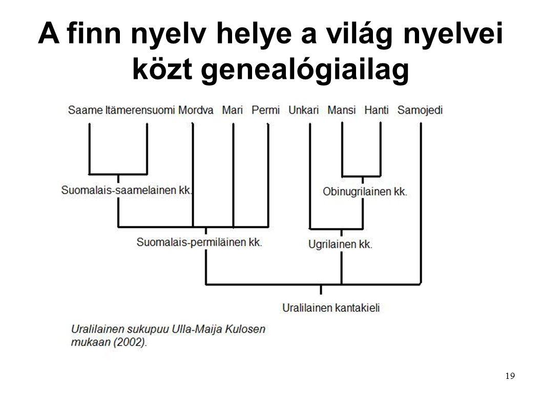 19 A finn nyelv helye a világ nyelvei közt genealógiailag