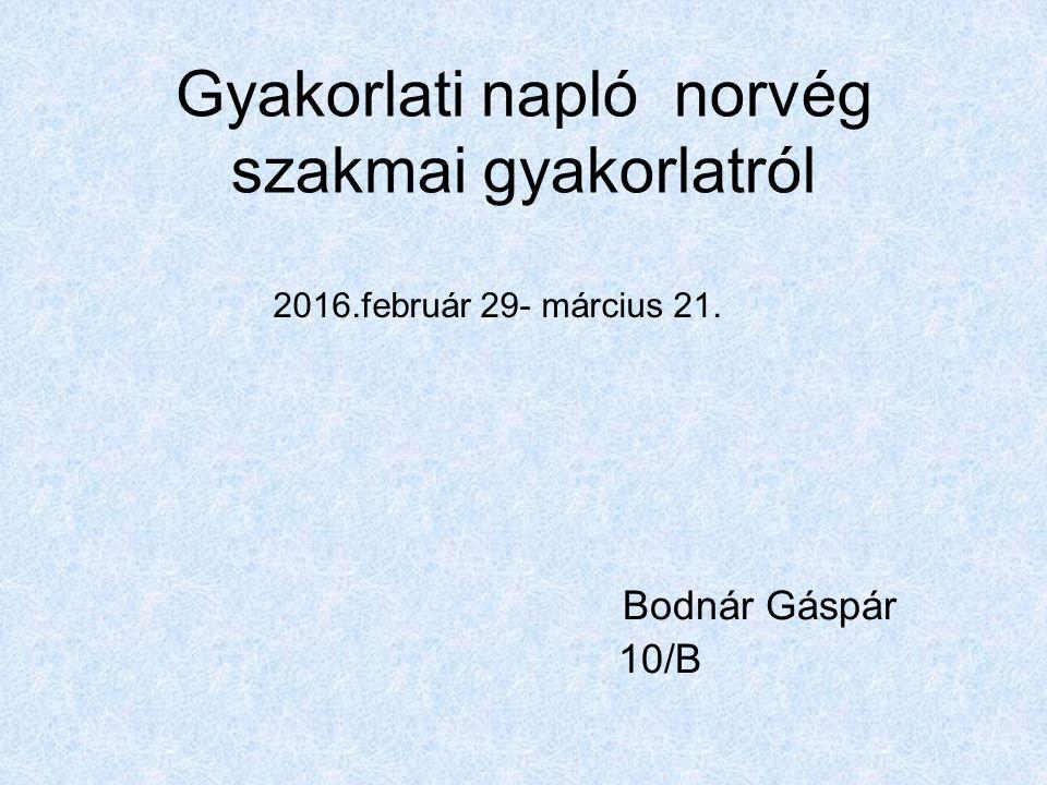 Gyakorlati napló norvég szakmai gyakorlatról Bodnár Gáspár 10/B 2016.február 29- március 21.