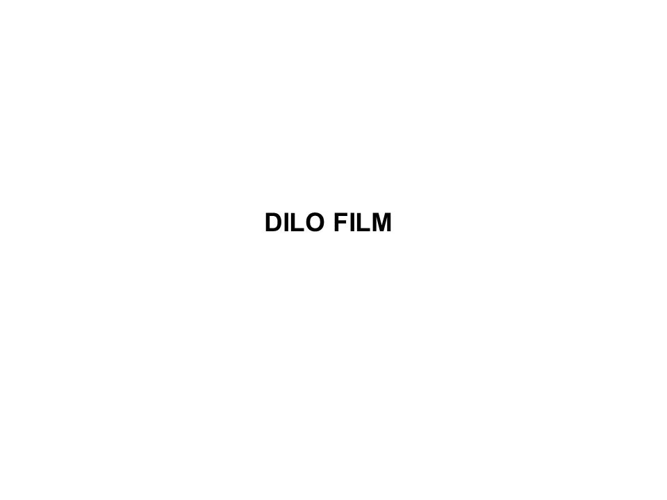 DILO FILM