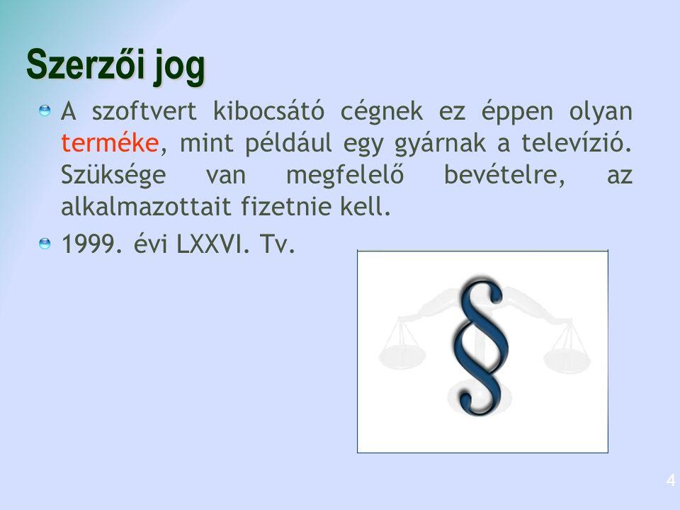 Szerzői jog A szoftvert kibocsátó cégnek ez éppen olyan terméke, mint például egy gyárnak a televízió.