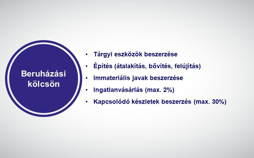 Szakmai felkészülés Rendezett munkaügyi kapcsolatok Tervezési dokumentáció Szakmai koncepció Projektköltségvetés Vidéki telephely