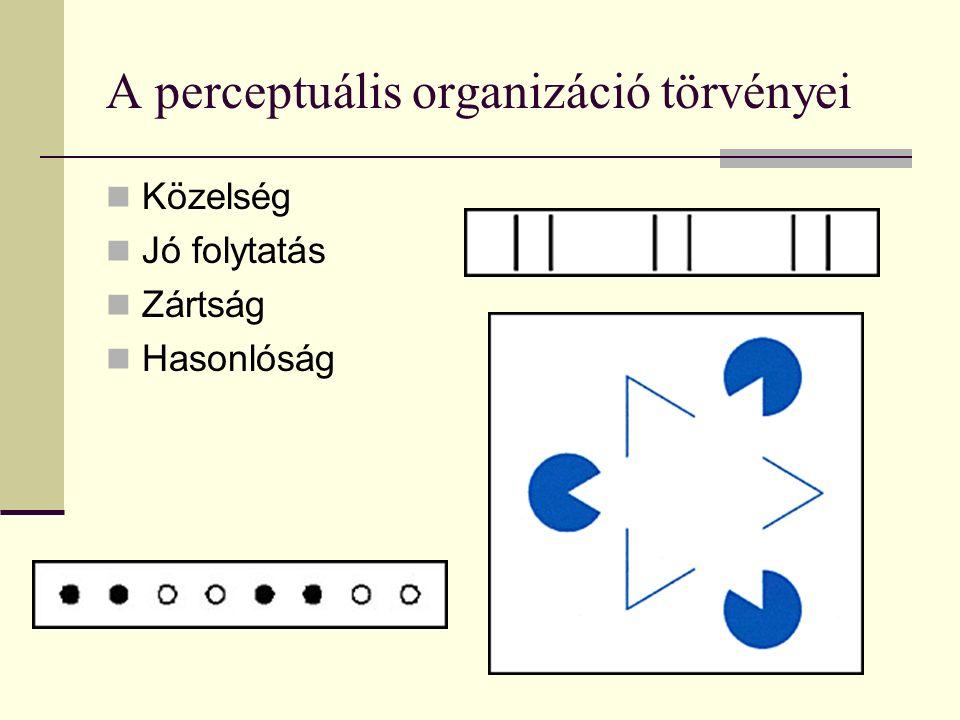 A perceptuális organizáció törvényei Közelség Jó folytatás Zártság Hasonlóság