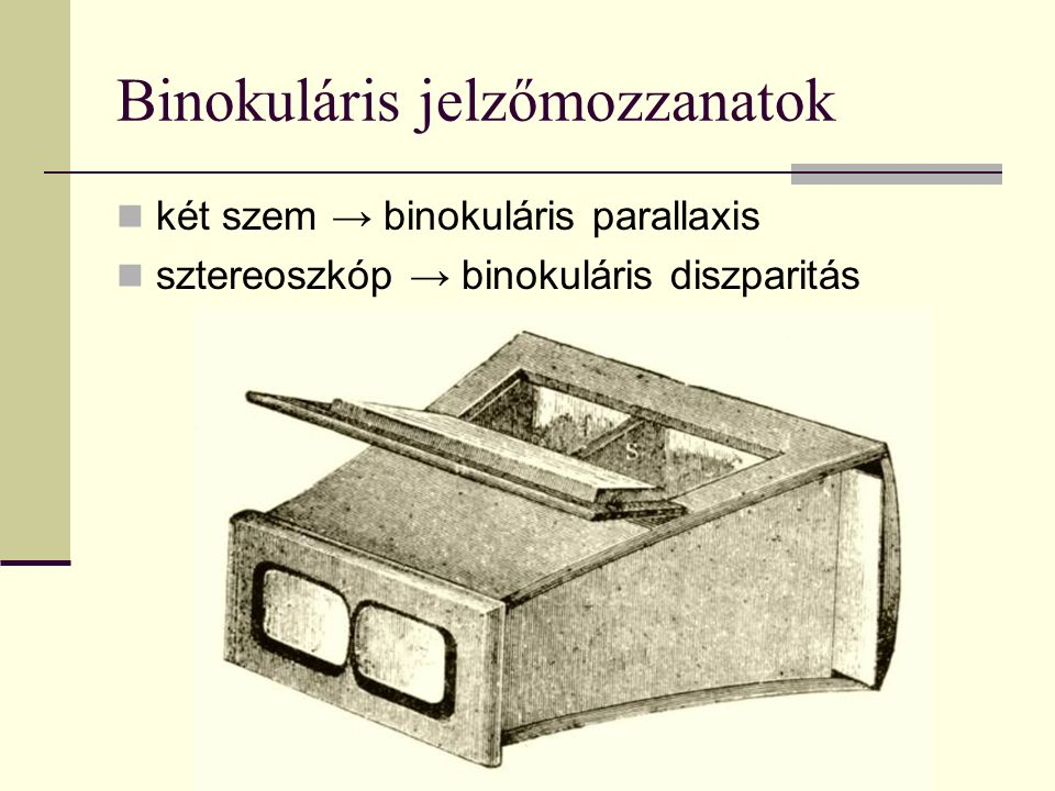 Binokuláris jelzőmozzanatok két szem → binokuláris parallaxis sztereoszkóp → binokuláris diszparitás