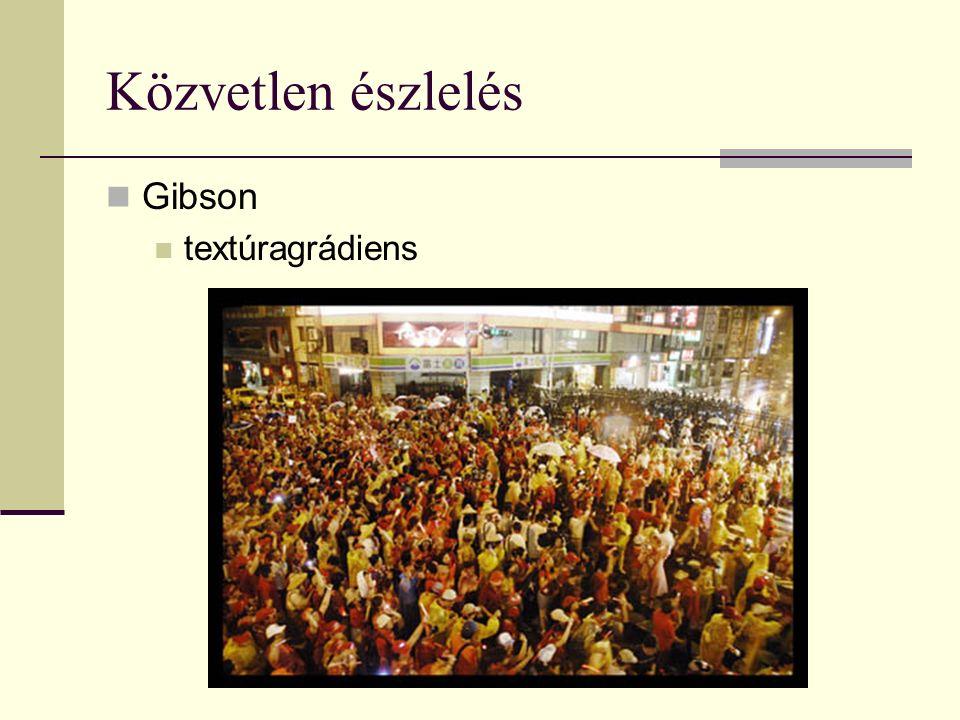 Közvetlen észlelés Gibson textúragrádiens
