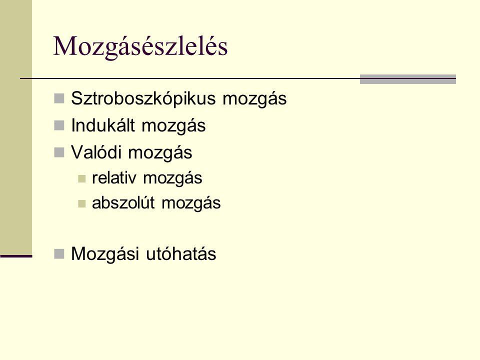 Mozgásészlelés Sztroboszkópikus mozgás Indukált mozgás Valódi mozgás relativ mozgás abszolút mozgás Mozgási utóhatás