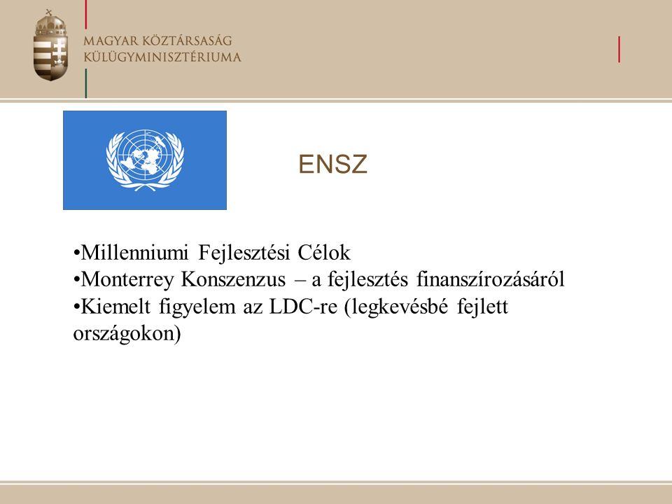 ENSZ Millenniumi Fejlesztési Célok Monterrey Konszenzus – a fejlesztés finanszírozásáról Kiemelt figyelem az LDC-re (legkevésbé fejlett országokon)