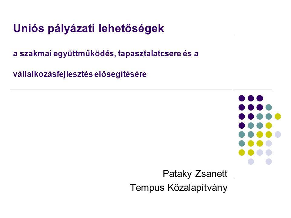 Uniós pályázati lehetőségek a szakmai együttműködés, tapasztalatcsere és a vállalkozásfejlesztés elősegítésére Pataky Zsanett Tempus Közalapítvány