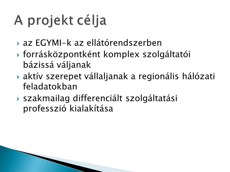  az EGYMI-k az ellátórendszerben  forrásközpontként komplex szolgáltatói bázissá váljanak  aktív szerepet vállaljanak a regionális hálózati feladat