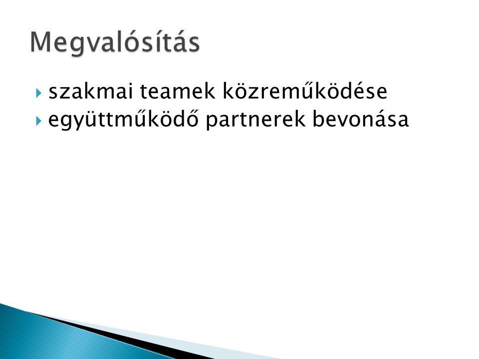  szakmai teamek közreműködése  együttműködő partnerek bevonása