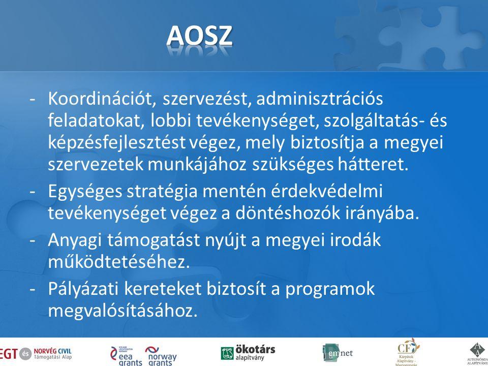 -Koordinációt, szervezést, adminisztrációs feladatokat, lobbi tevékenységet, szolgáltatás- és képzésfejlesztést végez, mely biztosítja a megyei szervezetek munkájához szükséges hátteret.