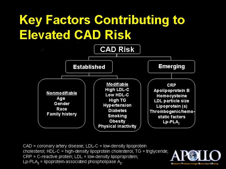 Key Factors Contributing to Elevated CAD Risk