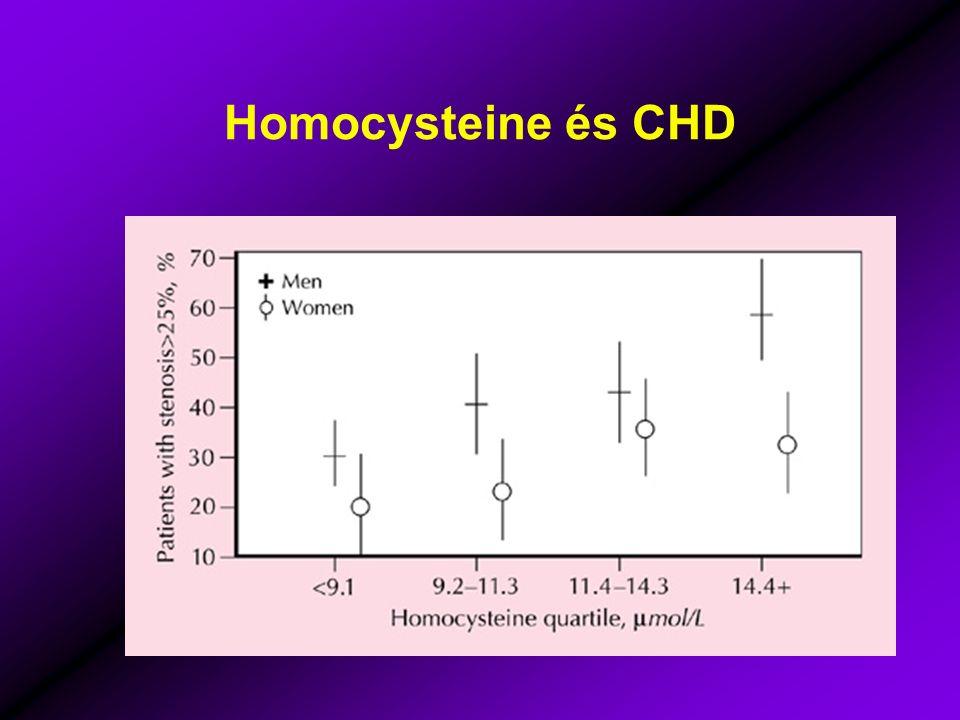 Homocysteine és CHD