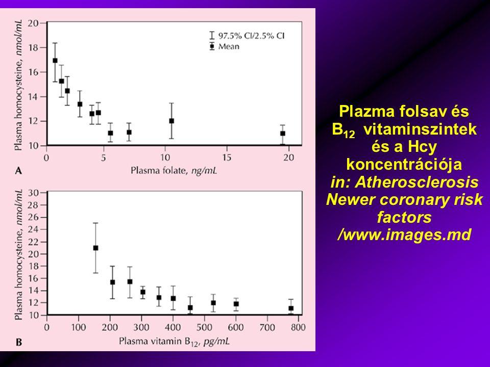 Plazma folsav és B 12 vitaminszintek és a Hcy koncentrációja in: Atherosclerosis Newer coronary risk factors /www.images.md