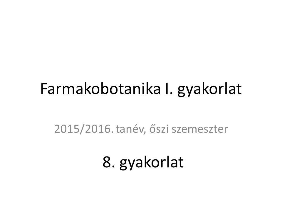 Farmakobotanika I. gyakorlat 2015/2016. tanév, őszi szemeszter 8. gyakorlat