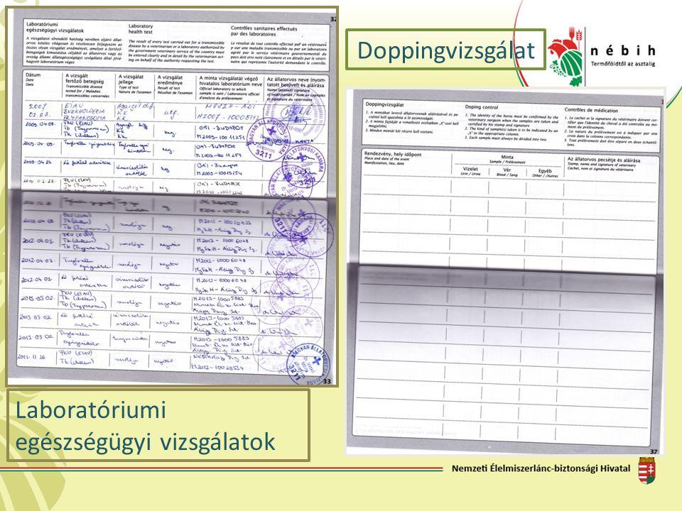Laboratóriumi egészségügyi vizsgálatok Doppingvizsgálat