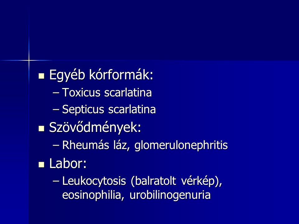 Egyéb kórformák: Egyéb kórformák: –Toxicus scarlatina –Septicus scarlatina Szövődmények: Szövődmények: –Rheumás láz, glomerulonephritis Labor: Labor: