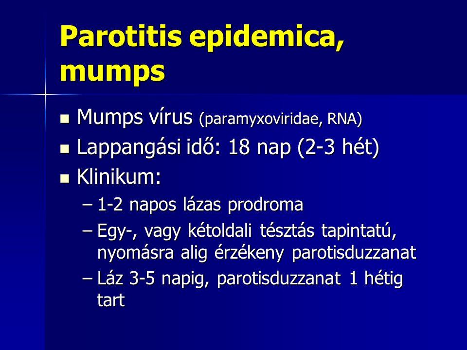 Parotitis epidemica, mumps Mumps vírus (paramyxoviridae, RNA) Mumps vírus (paramyxoviridae, RNA) Lappangási idő: 18 nap (2-3 hét) Lappangási idő: 18 n
