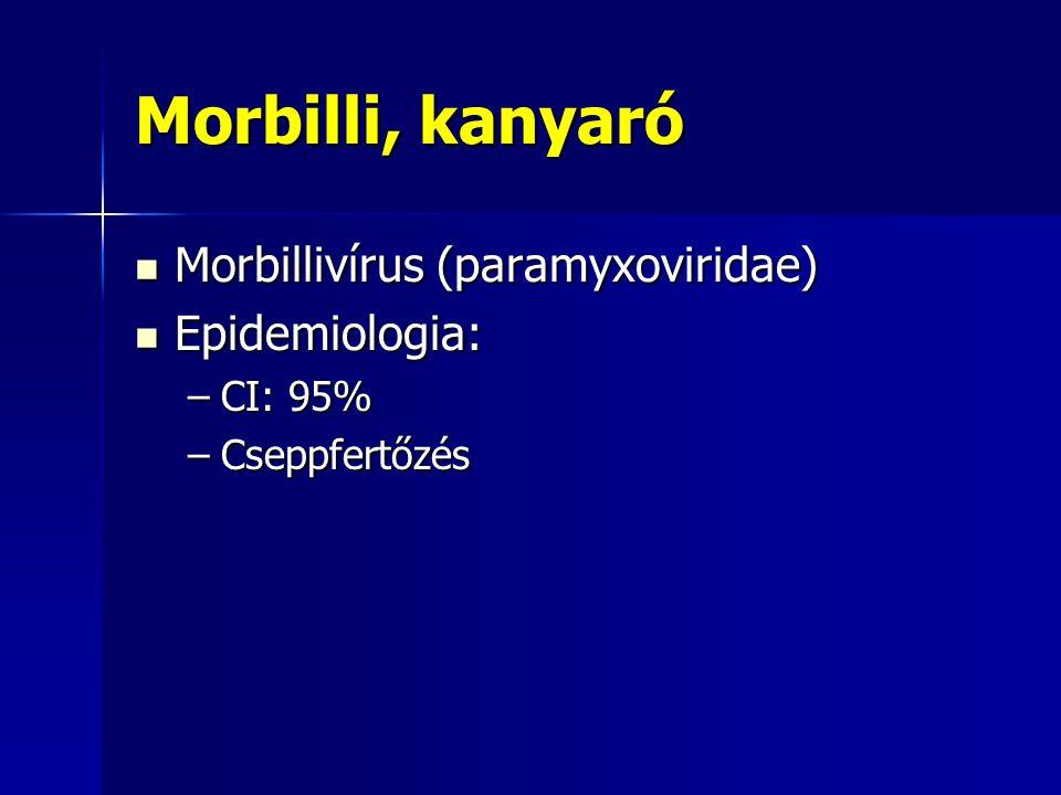Parotitis epidemica, mumps Mumps vírus (paramyxoviridae, RNA) Mumps vírus (paramyxoviridae, RNA) Lappangási idő: 18 nap (2-3 hét) Lappangási idő: 18 nap (2-3 hét) Klinikum: Klinikum: –1-2 napos lázas prodroma –Egy-, vagy kétoldali tésztás tapintatú, nyomásra alig érzékeny parotisduzzanat –Láz 3-5 napig, parotisduzzanat 1 hétig tart