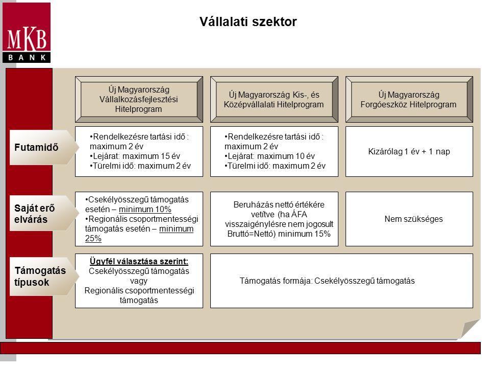 Vállalati szektor Új Magyarország Vállalkozásfejlesztési Hitelprogram Új Magyarország Forgóeszköz Hitelprogram Új Magyarország Kis-, és Középvállalati Hitelprogram Támogatás formája: Csekélyösszegű támogatás Beruházás nettó értékére vetítve (ha ÁFA visszaigénylésre nem jogosult Bruttó=Nettó) minimum 15% Csekélyösszegű támogatás esetén – minimum 10% Regionális csoportmentességi támogatás esetén – minimum 25% Saját erő elvárás Nem szükséges Ügyfél választása szerint: Csekélyösszegű támogatás vagy Regionális csoportmentességi támogatás Támogatás típusok Rendelkezésre tartási idő : maximum 2 év Lejárat: maximum 15 év Türelmi idő: maximum 2 év Kizárólag 1 év + 1 nap Rendelkezésre tartási idő : maximum 2 év Lejárat: maximum 10 év Türelmi idő: maximum 2 év Futamidő