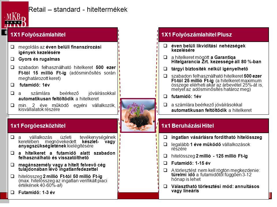 Vállalati szektor Új Magyarország Vállalkozásfejlesztési Hitelprogram Új Magyarország Forgóeszköz Hitelprogram Új Magyarország Kis-, és Középvállalati Hitelprogram 2004.