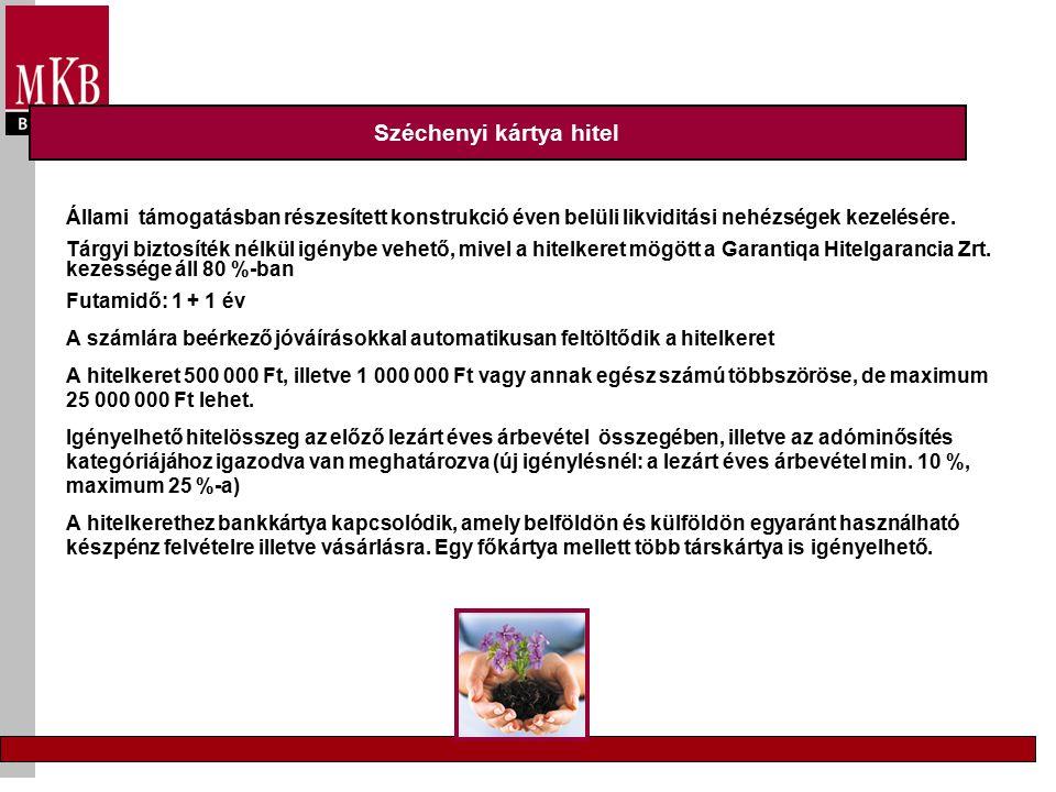 Vállalati szektor Új Magyarország Vállalkozásfejlesztési Hitelprogram Új Magyarország Forgóeszköz Hitelprogram Új Magyarország Kis-, és Középvállalati Hitelprogram 3 havi EURIBOR * 0,75 + 0,75% + legfeljebb 5% p.a.
