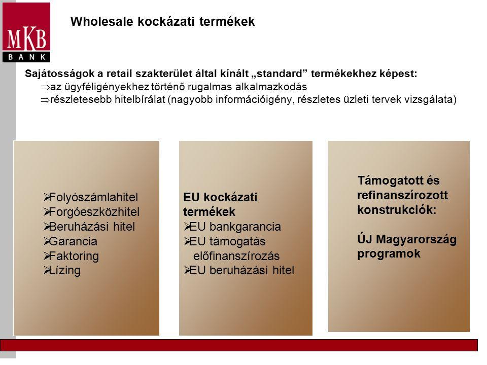 """Wholesale kockázati termékek Sajátosságok a retail szakterület által kínált """"standard termékekhez képest:  az ügyféligényekhez történő rugalmas alkalmazkodás  részletesebb hitelbírálat (nagyobb információigény, részletes üzleti tervek vizsgálata)  Folyószámlahitel  Forgóeszközhitel  Beruházási hitel  Garancia  Faktoring  Lízing EU kockázati termékek  EU bankgarancia  EU támogatás előfinanszírozás  EU beruházási hitel Támogatott és refinanszírozott konstrukciók: ÚJ Magyarország programok"""