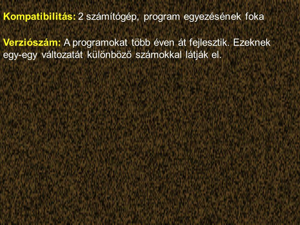 Kompatibilitás: 2 számítógép, program egyezésének foka Verziószám: A programokat több éven át fejlesztik.