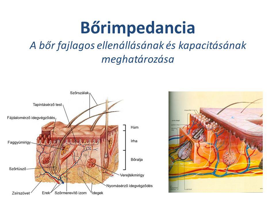 Bőrimpedancia A bőr fajlagos ellenállásának és kapacitásának meghatározása