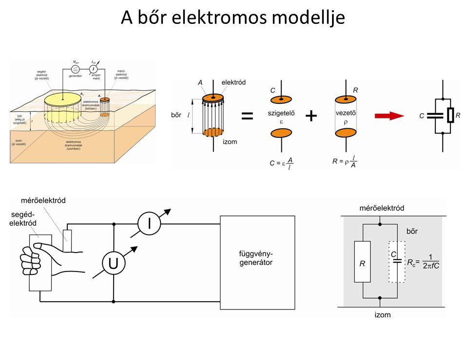 A bőr elektromos modellje