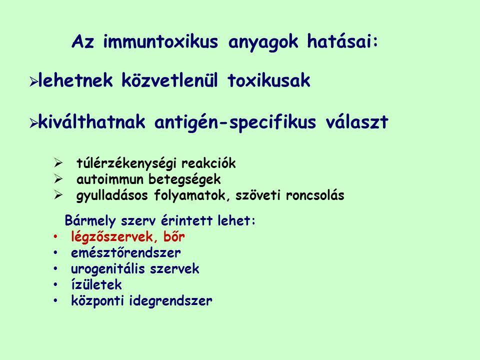 Az immuntoxikus anyagok hatásai:  lehetnek közvetlenül toxikusak  kiválthatnak antigén-specifikus választ  túlérzékenységi reakciók  autoimmun betegségek  gyulladásos folyamatok, szöveti roncsolás Bármely szerv érintett lehet: légzőszervek, bőr emésztőrendszer urogenitális szervek ízületek központi idegrendszer