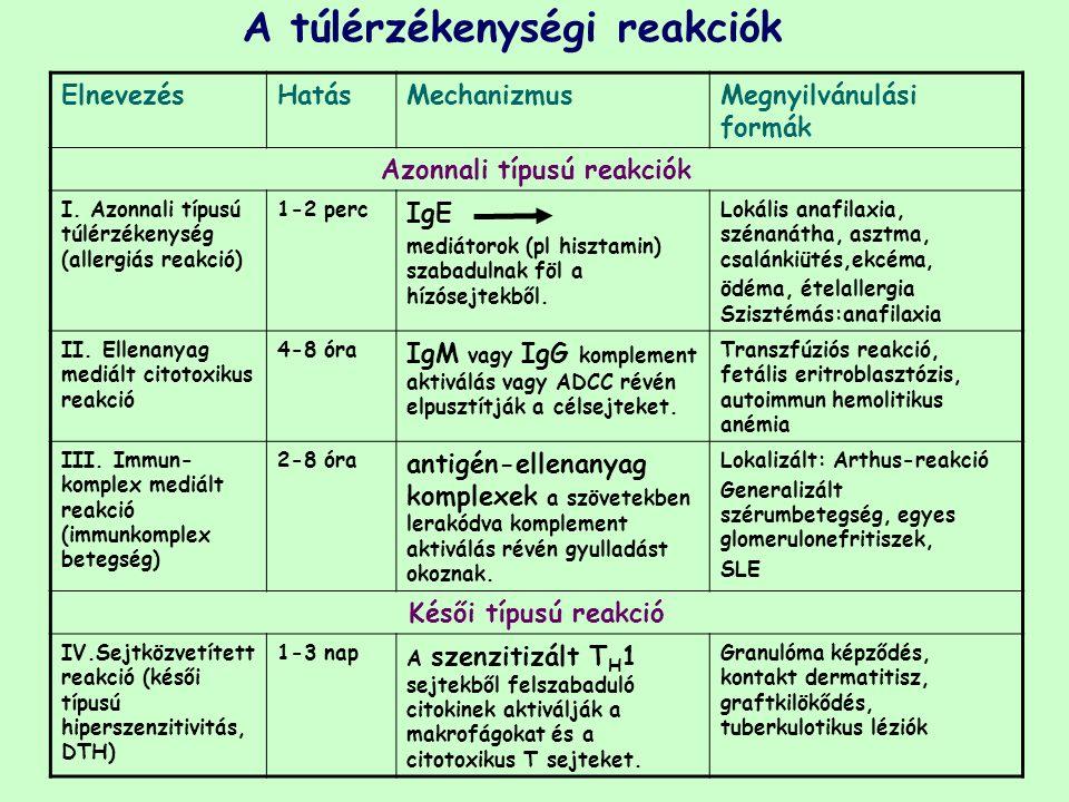 ElnevezésHatásMechanizmusMegnyilvánulási formák Azonnali típusú reakciók I. Azonnali típusú túlérzékenység (allergiás reakció) 1-2 perc IgE mediátorok