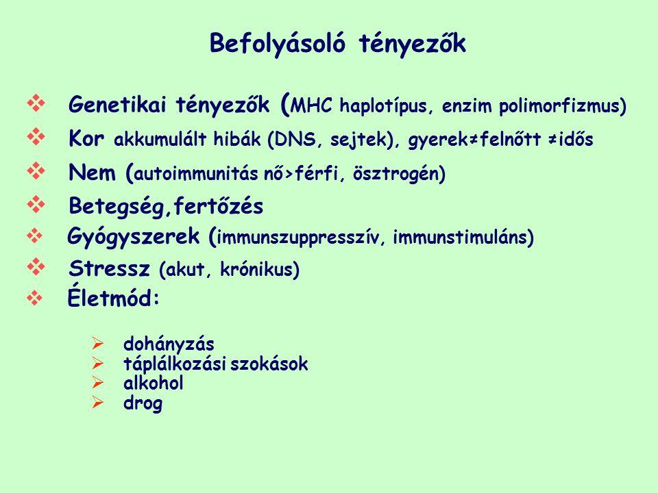 Befolyásoló tényezők  Genetikai tényezők ( MHC haplotípus, enzim polimorfizmus)  Kor akkumulált hibák (DNS, sejtek), gyerek≠felnőtt ≠idős  Nem ( autoimmunitás nő>férfi, ösztrogén)  Betegség,fertőzés  Gyógyszerek ( immunszuppresszív, immunstimuláns)  Stressz (akut, krónikus)  Életmód:  dohányzás  táplálkozási szokások  alkohol  drog