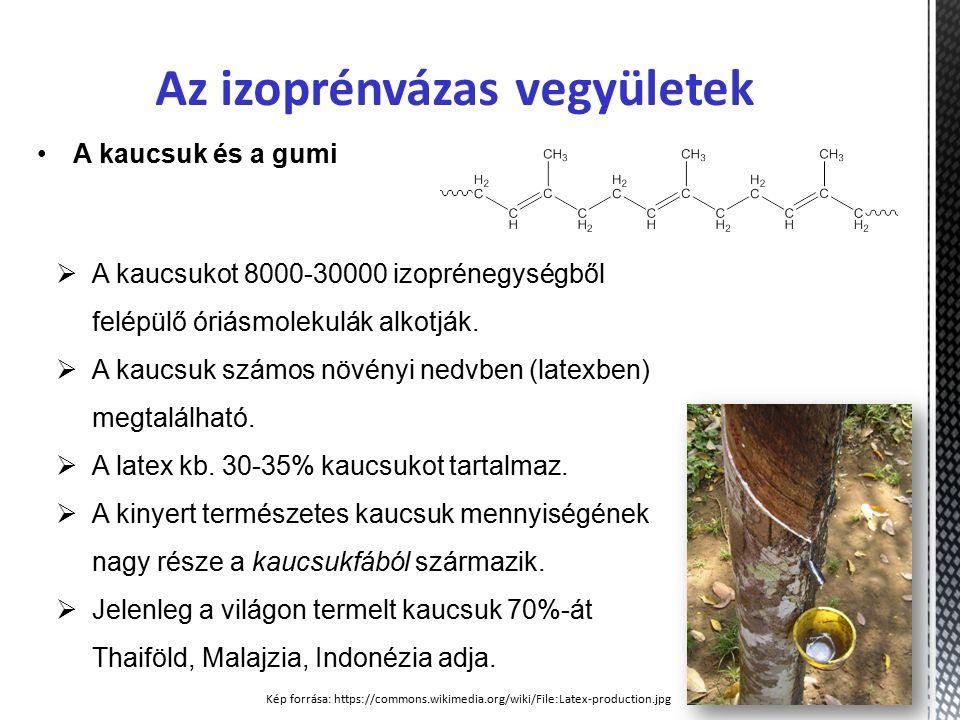 Az izoprénvázas vegyületek A kaucsuk és a gumi  A kaucsukot 8000-30000 izoprénegységből felépülő óriásmolekulák alkotják.