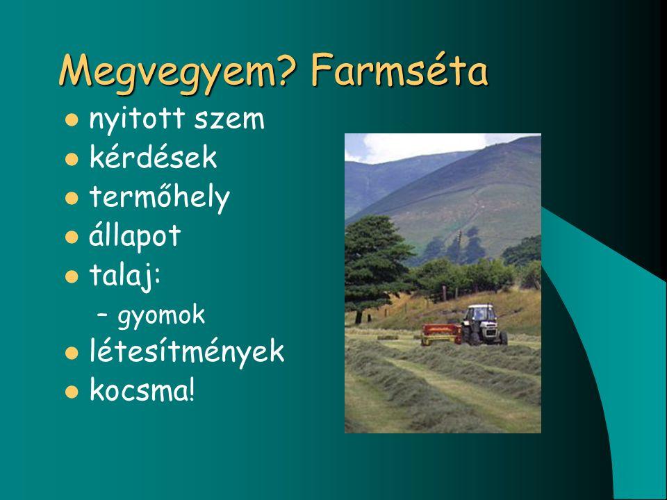 Megvegyem? Farmséta nyitott szem kérdések termőhely állapot talaj: –gyomok létesítmények kocsma!