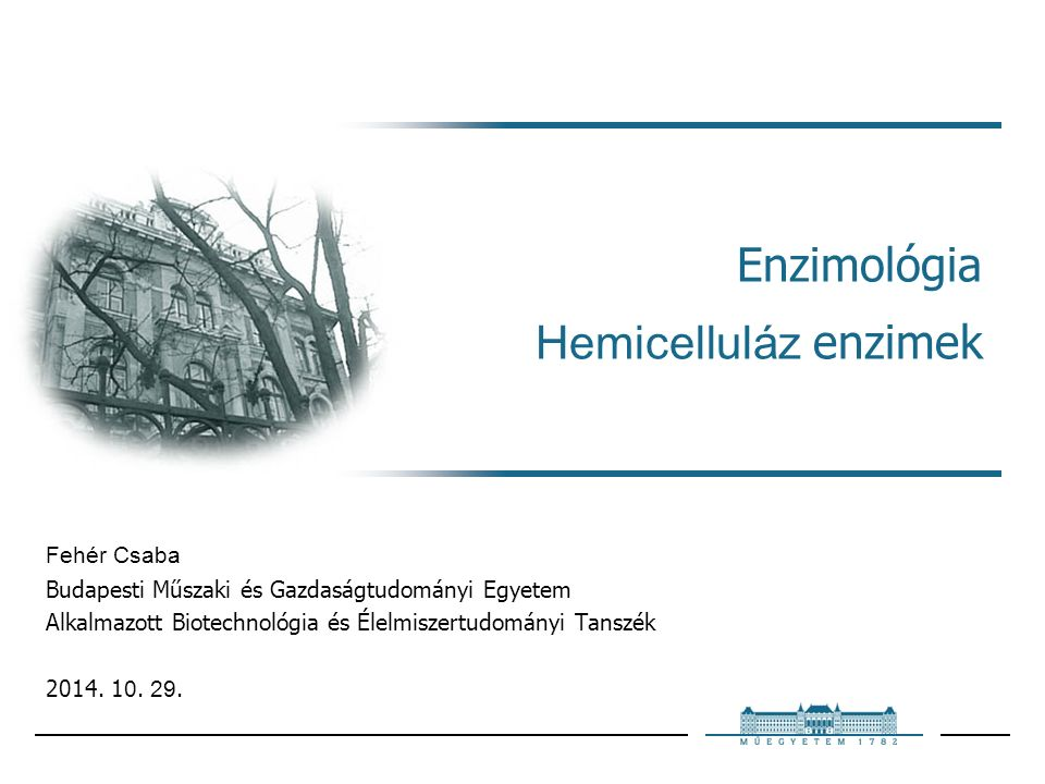 Enzimológia Hemicelluláz enzimek Fehér Csaba Budapesti Műszaki és Gazdaságtudományi Egyetem Alkalmazott Biotechnológia és Élelmiszertudományi Tanszék 2014.