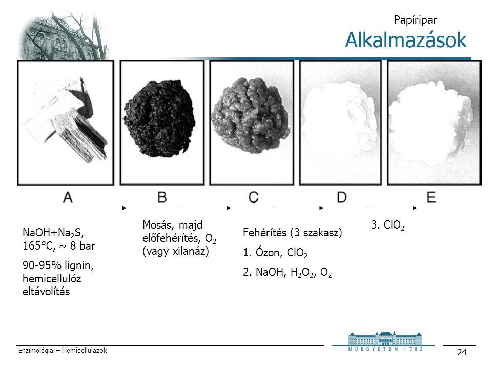 Enzimológia – Hemicellulázok 24 Alkalmazások Papíripar NaOH+Na 2 S, 165°C, ~ 8 bar 90-95% lignin, hemicellulóz eltávolítás Mosás, majd előfehérítés, O 2 (vagy xilanáz) Fehérítés (3 szakasz) 1.