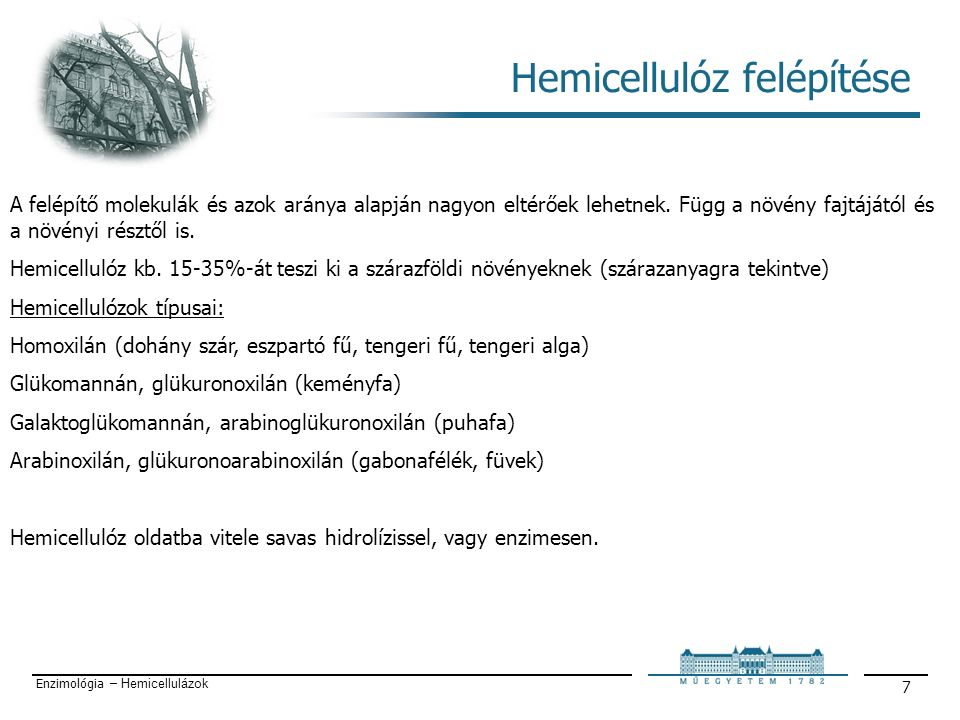 Enzimológia – Hemicellulázok 7 Hemicellulóz felépítése A felépítő molekulák és azok aránya alapján nagyon eltérőek lehetnek.