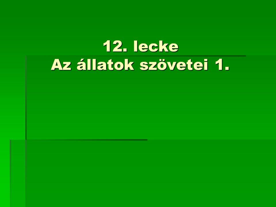 12. lecke Az állatok szövetei 1.
