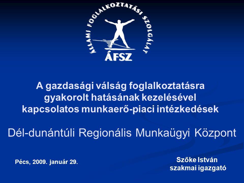 Dél-dunántúli Regionális Munkaügyi Központ Szőke István szakmai igazgató Pécs, 2009.
